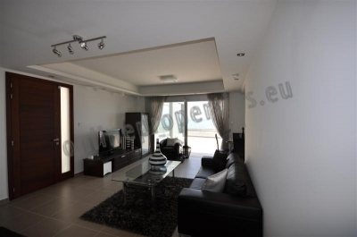 Upper floor apt with roof garden and Jacuzzi