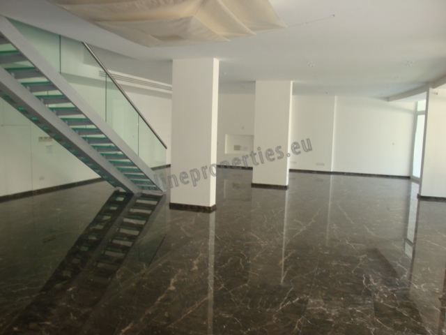 The Best Apartment in Nicosia - 650m2 Living Space