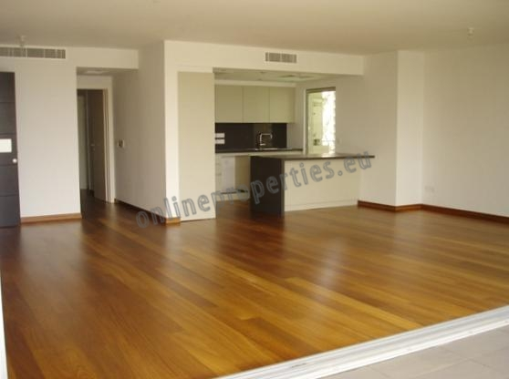 New, Luxury apartment in Engomi