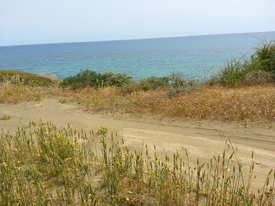 Massive plot for sale in the sea side of Mazotos