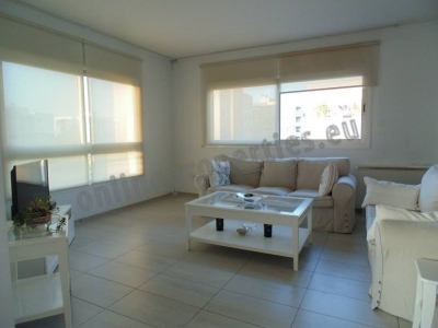 Penthouse in Acropolis furnished on demand