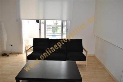 1 bedroom apartment with huge veranda
