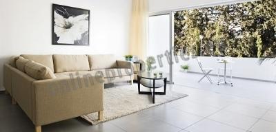 Luxury 1bedroom apartment in Aglantzia.
