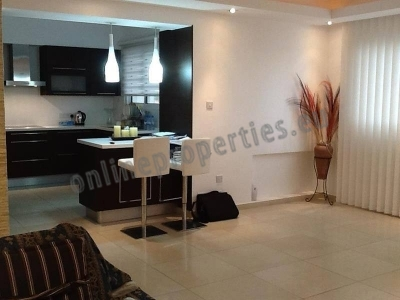 THREE BEDROOM APARTMENT IN PALLOURIOTISSA/BMH AREA